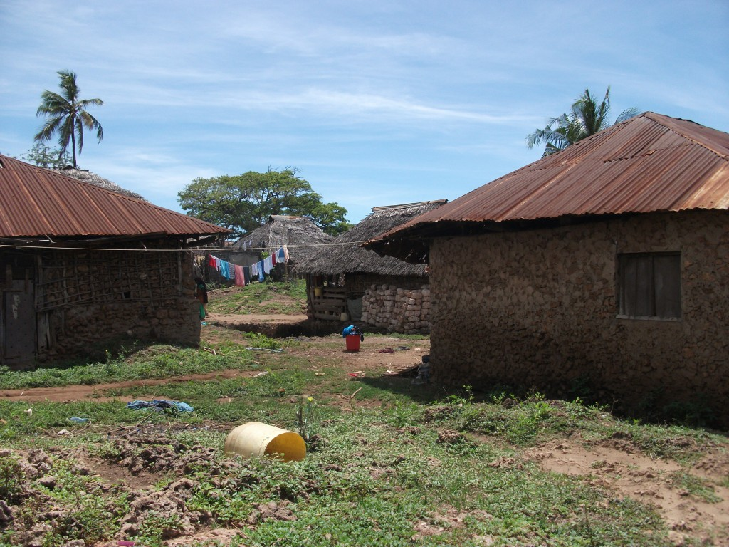 Houses in Mkwiro typical of the type found on Wasini Island