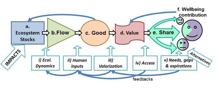 Daw+et+al+Figure+2+resub2