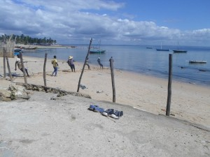 Fishermen hauling in a beach seine near Maringanha